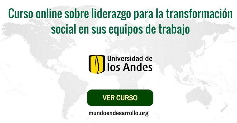 Curso online de liderazgo para ONGs: transformación social en equipos
