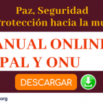 manual online onu