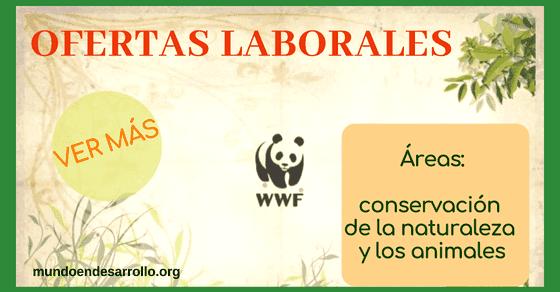 Ofertas de empleo en WWF en temas de conservación y medio ambiente