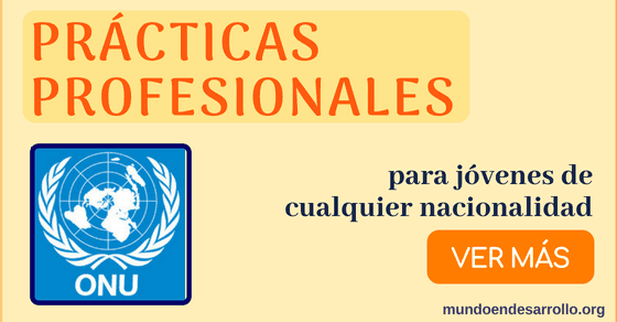 Prácticas profesionales en la ONU