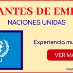 vacantes de empleo en las naciones unidas