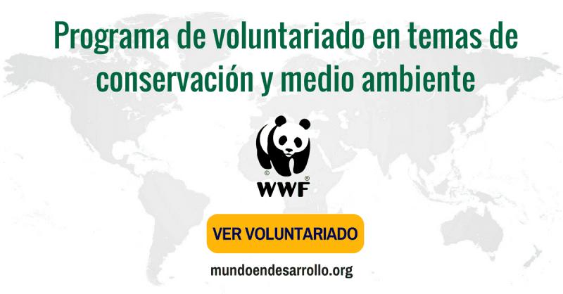 Programa de voluntariado internacional WWF en temas de conservación