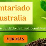 Voluntariado internacional en Australia