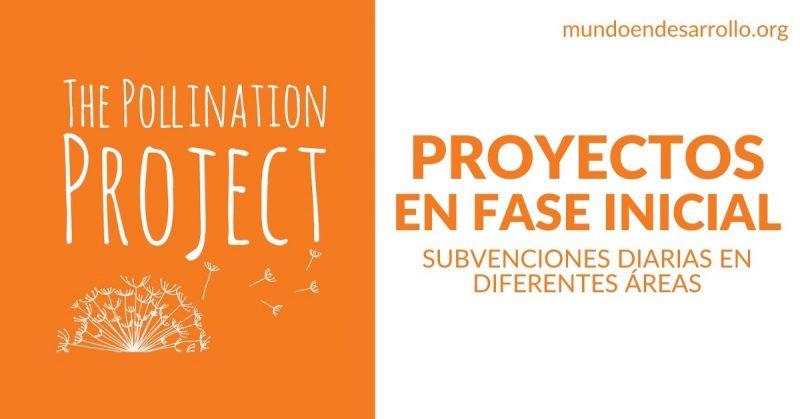 financiamiento proyectos fase inicial